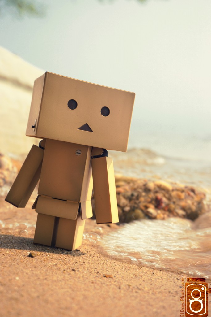 Danbo on the Beach